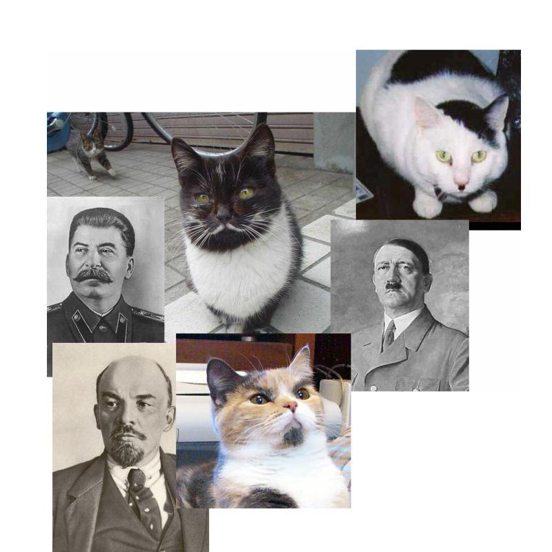 http://www.coolpics.ru/files/pics/73e4dace4177732f4da5b011ffe84a3b.jpg